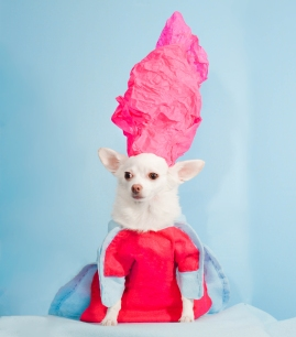 Anthony Rubio, 2017 Met Gala, Rei Kawakubo Inspiration, Dog Fashion, Comme Des Garcons, DSC_3523 NEW 300